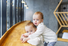 Portrait of charming kids in cafe behind a bar counter. Royalty Free Stock Photo