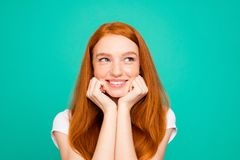 Portrait of charming, lovely, cute, beautiful, sweet lady look a royalty free stock image
