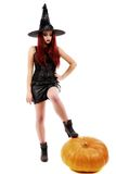 Portrait of a charming red-haired witch holding pumpkin . Hallow Stock Image