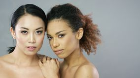 Two young beautiful women in studio. Portrait of charming young brunette and ethnic curly women looking at camera and posing in studio stock video