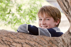Portrait of cheerful boy, park, summer Stock Image