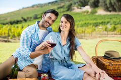 Portrait of cheerful couple holding wineglasses Royalty Free Stock Images