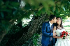 Portrait of the cheerful newlywed couple smiling and tenderly hugging under the green tree. Portrait of the cheerful newlywed couple smiling and tenderly Stock Photos