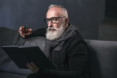Happy retire tasting delicious alcohol liquid. Portrait of cheerful unshaven old man drinking beverage while looking through volume on cozy sofa. Rest concept Stock Photos