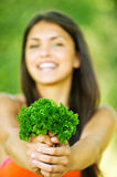 Portrait cheerful woman hands herbs Royalty Free Stock Photos