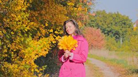 Portrait of cheerful young woman with autumn leafs, golden foliage stock footage
