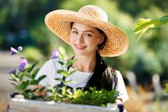 Portrait of cheerful young woman gardener with flowers in wooden box for sale in her shop stock photo