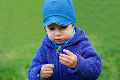 Portrait of child. Portrait of adorable toddler on grass stock photography
