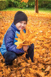 Portrait of a child with autumn leaves in hand Royalty Free Stock Photo