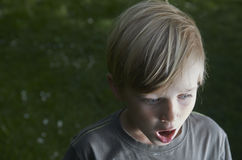 Portrait of Child Blond Boy with astonished expression Stock Photo
