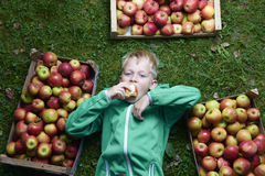 Portrait of Child blond boy lying on the green grass background with pile of apples, holding and eating apple Stock Images