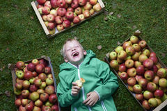 Portrait of Child blond boy lying on the green grass background with pile of apples, holding and eating apple Stock Image
