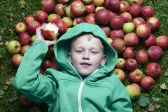 Portrait of Child blond boy lying on the green grass background with pile of apples, holding and eating apple Stock Photos