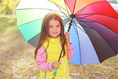 Portrait child with colorful umbrella in sunny autumn Stock Photos