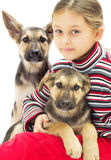 Portrait of a child and a dog Stock Photography
