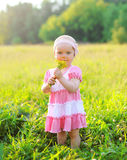 Portrait of child with flowers on the grass in summer Royalty Free Stock Image