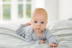 Portrait of a child four months on bed. stock photos