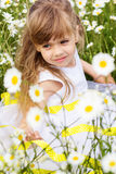 Portrait of child girl at camomile field Stock Images