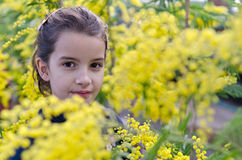 Portrait of a child between the mimosas Royalty Free Stock Photography