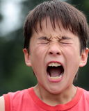 Portrait of a child screaming. With eyes closed and mouth wide open Stock Photography