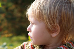 Portrait of the child, sideface Stock Photography