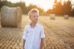 Portrait of a child  in the sunny day in a field Stock Photography
