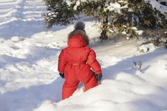 Portrait of a child in winter clothes, a walk through a winter park, Stock Image