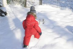 Portrait of a child in winter clothes, a walk through a winter park, Royalty Free Stock Photography