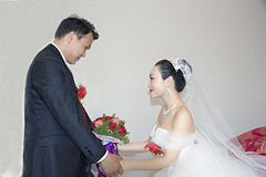 Portrait of Chinese bride and groom Stock Image