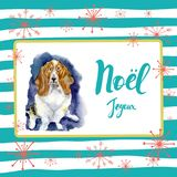 Portrait of Christmas dog. Merry Christmas and New Year poster. Basset hound with Merry Christmas card design with. Greetings in french language on a striped Royalty Free Stock Photos