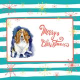 Portrait of Christmas dog. Merry Christmas and New Year poster. Basset hound with merry Christmas letters on a striped. Background with snowflakes Stock Image