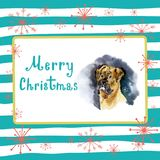 Portrait of Christmas dog. Merry Christmas and New Year poster, greeting card. Boxer dog with merry Christmas letters on. A striped background with snowflakes Stock Photos