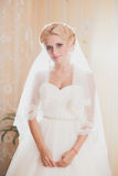Portrait classique de la jeune mariée Photographie stock
