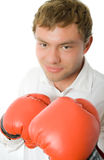 Portrait of clerk in in boxin gloves isolated Stock Photography