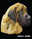 Portrait coloré de vecteur de great dane Illustration Stock