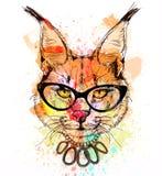 Portrait coloré de caractère de chat sauvage Photographie stock