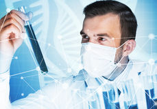 Portrait of concentrated male scientist working with reagents in laboratory Royalty Free Stock Photos