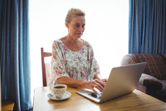 Portrait of concentrated senior woman using a laptop Stock Photos