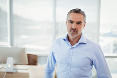 Portrait of confidence executive Stock Images