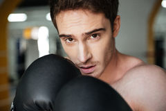 Portrait of confident boxer on ring Stock Images