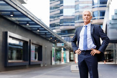 Portrait of confident businessman outdoors. Portrait of confident businessman in suit outdoors Royalty Free Stock Image