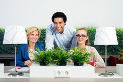 Portrait Of Confident Environmentalists In Office Stock Photography