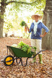 Portrait of confident gardener with vegetables in wheelbarrow at botanical garden royalty free stock photo