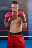 Portrait of confident male boxer in fighting stance. Portrait of confident male boxer standing in fighting stance at fitness studio royalty free stock photography