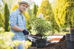 Portrait of confident man planting pot at garden stock image