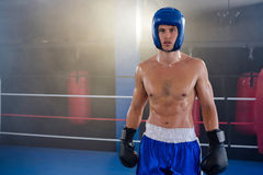 Portrait of confident shirtless boxer wearing protective sportsgear Royalty Free Stock Photo