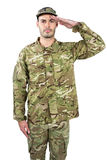 Portrait of confident soldier saluting. Against white background Royalty Free Stock Image