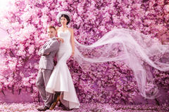 Portrait of confident wedding couple standing against wall covered with pink flowers Stock Image