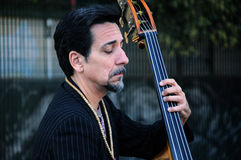 Portrait of Contrabass Player Stock Image