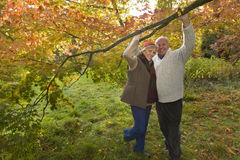 Portrait of couple holding branch in woods Stock Photography